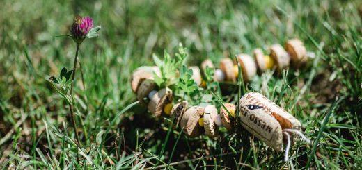 Korkenschlange | Ein Basteltipp mit Korken