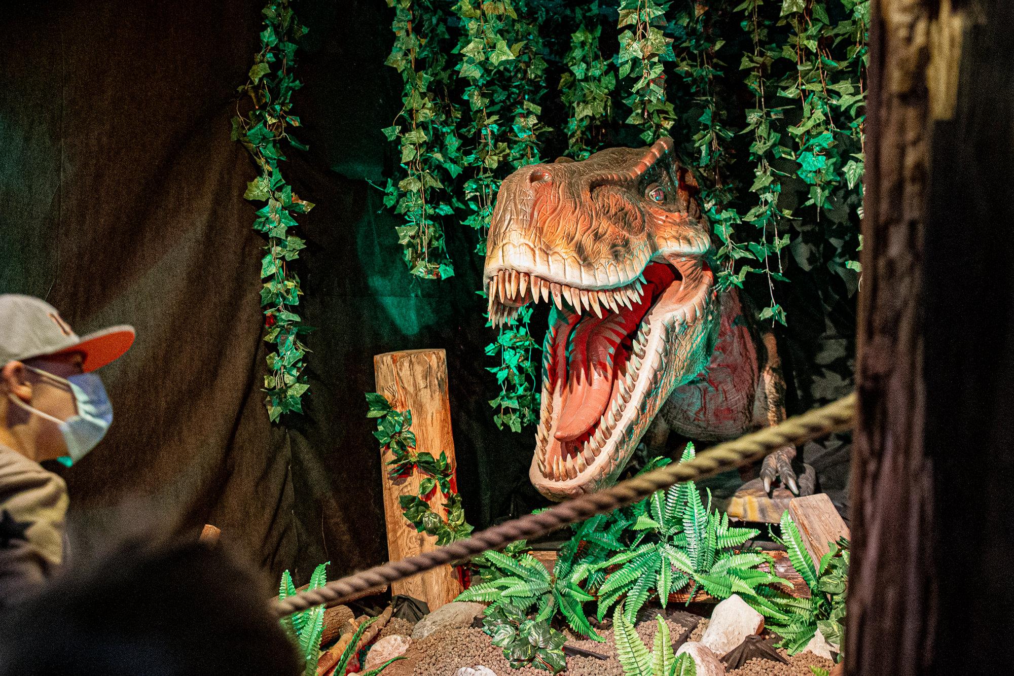 Dinoland | Vomp | Terfens | Ausflugsziel Tirol | Tyrannosaurus Rex