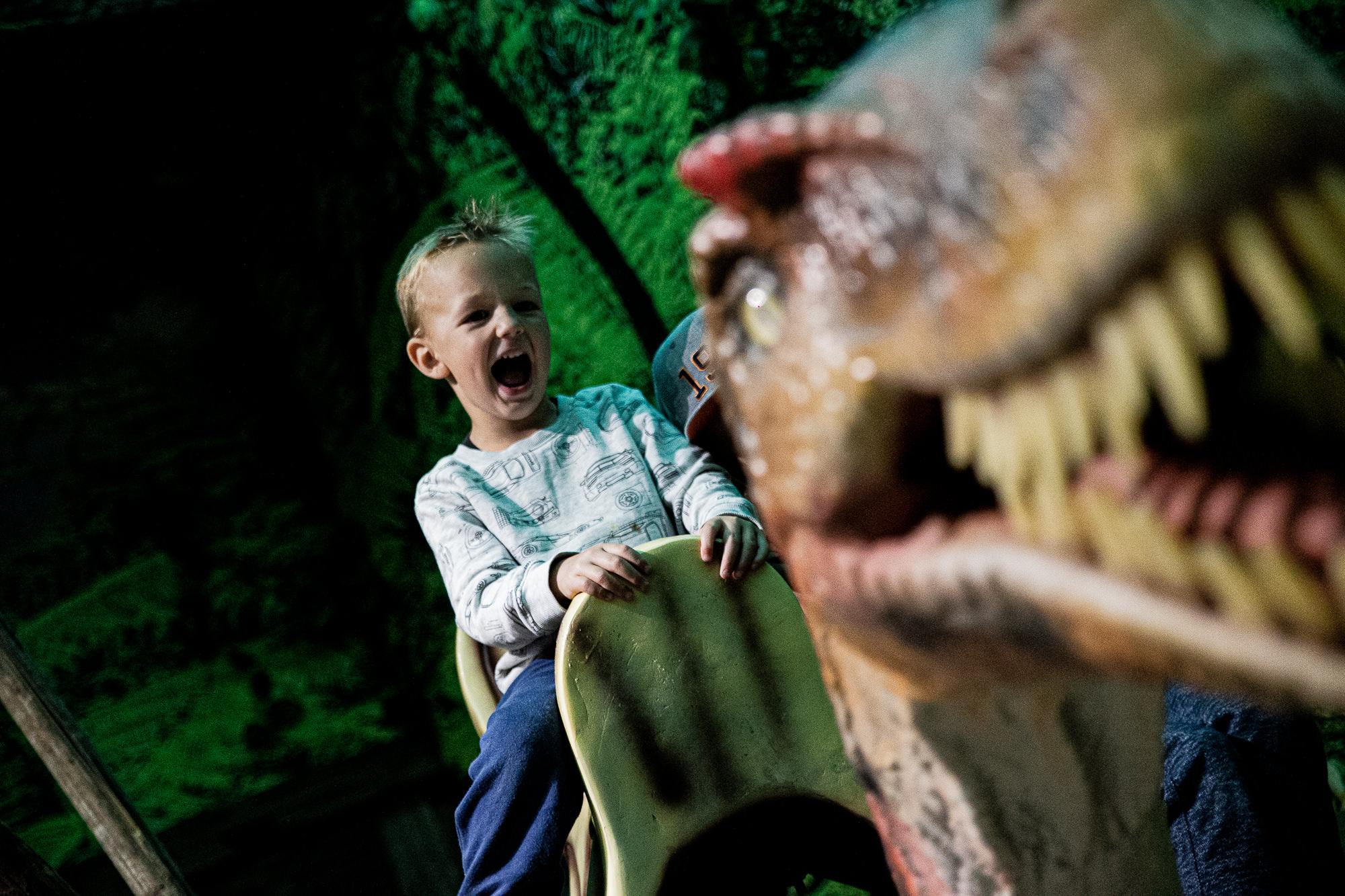 Dinoland | Vomp | Terfens | Ausflugsziel Tirol | Dinosaurier Reiten