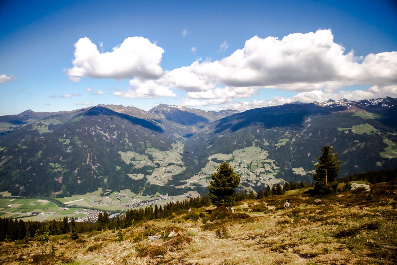 Wildtierpfad Zillertaler Höhenstraße | Ausflugsziel Tirol | Wandern mit Kindern